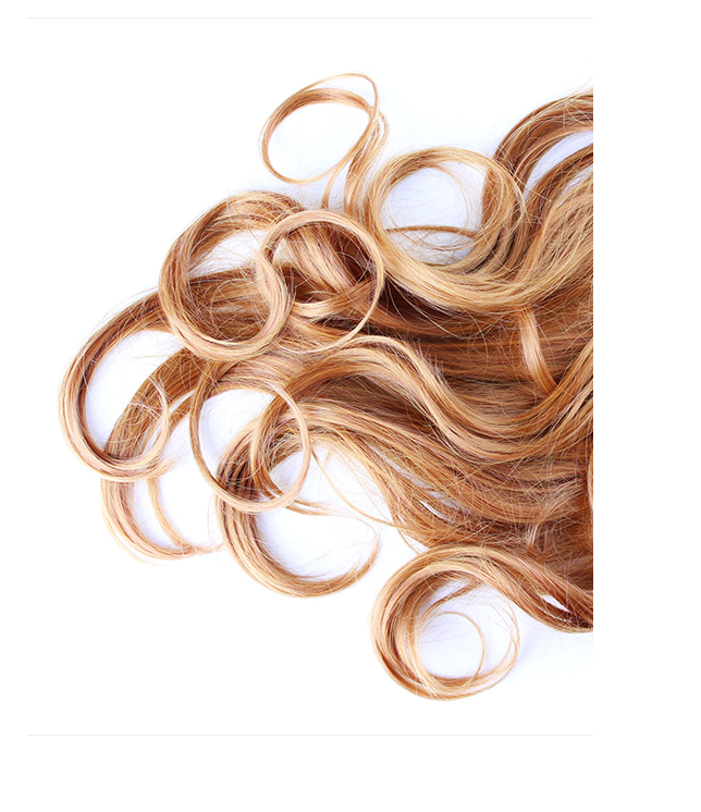Woman's brown hair